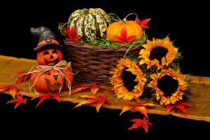 Öffnungszeiten in den Herbstferien | Zahnarzt Nürnberg